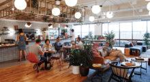 Headbang ¿Coworking?, los espacios más 'cool' para trabajar en la CDMX