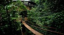 Headbang Conoce esta comunidad sustentable en medio de la selva