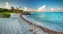 Headbang Hospédate aquí y viaja al Caribe como un experto lo hace