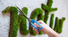 Headbang Grafitis con vida, ¿así sí aceptamos el grafiti?