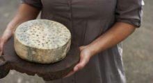 Headbang KraftKar, el campeón de los quesos