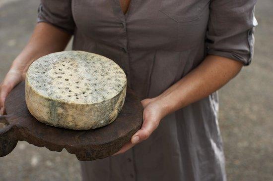 KraftKar, el campeón de los quesos