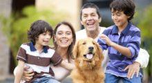 Headbang Las 10 mejores razas de perros para que sean compañeros de tus hijos desde niños