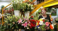 Headbang El arte de ser florista y quiénes son los más picudos
