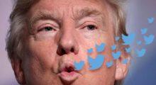 Headbang ¡Ya salió el peine! Trump tiene 13M de followers falsos en Twitter