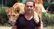 Headbang Conoce a los tigres, leones y panteras más tiernos del internet