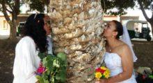 Headbang Estas personas se casaron con árboles y el mundo lo celebra